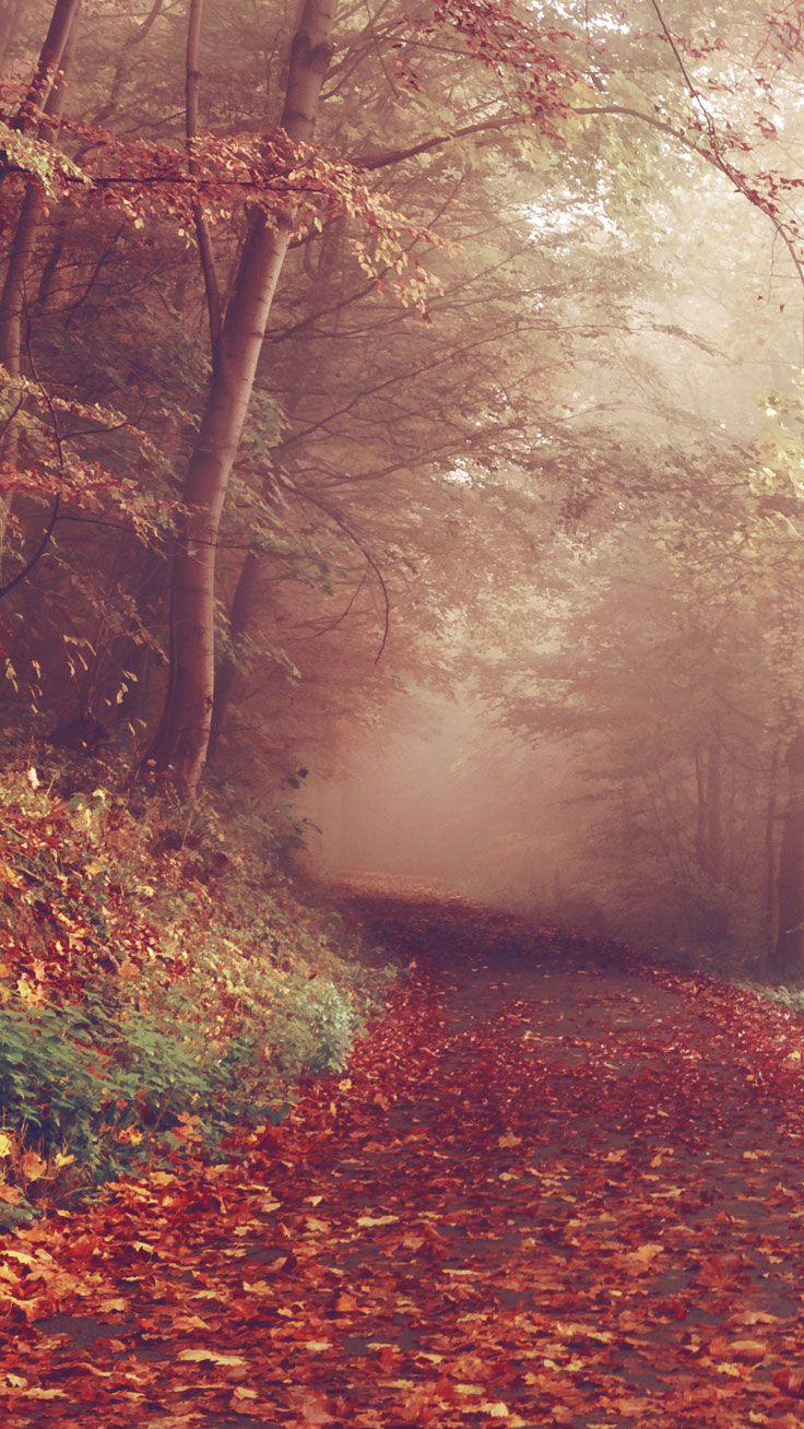 Free Autumn iPhone Wallpaper Collection ★ Download it at…
