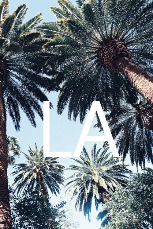 LA \ Endless Summer //