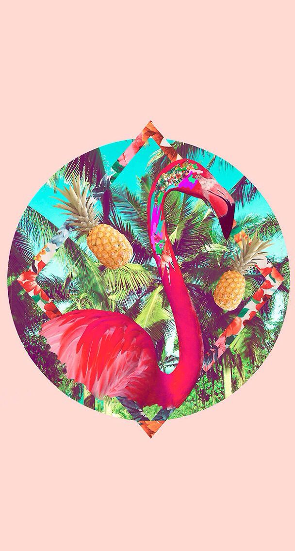 Flamingo ★ Download more tropical iPhone Wallpapers at @prettywallpaper