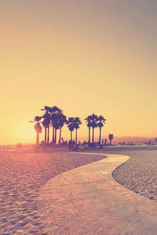 816f7f180153bdaf26f1aa226bc459f1  venice beach california santa monica california