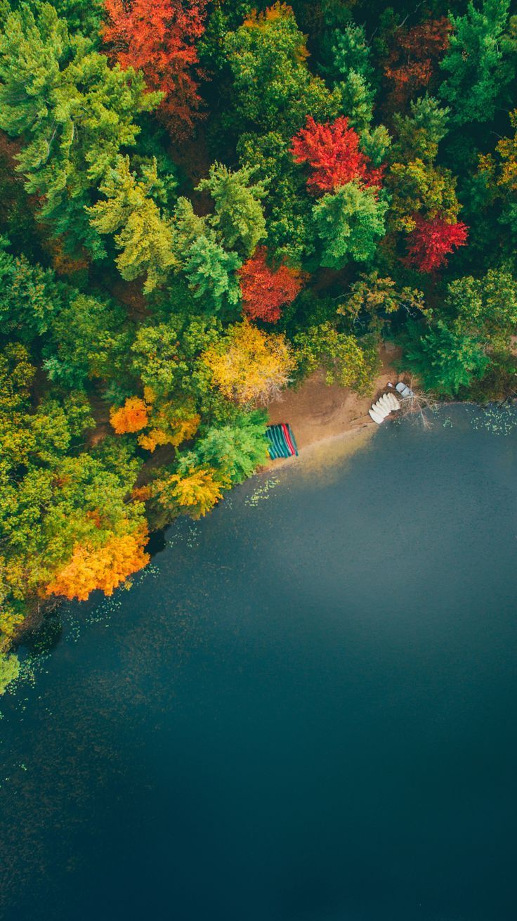 ~~Fall on the lake | drone view of autumn, Cannon Township, Michigan | by Kyle Kuiper~~ #helloautumn #autumnscenery #michigan #cannontownship