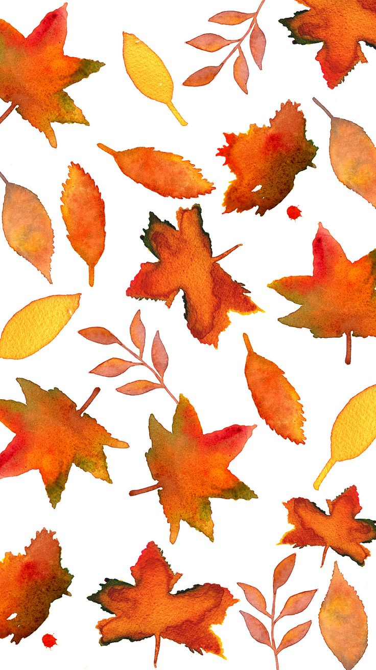Fall Leaves | Flickr - Photo Sharing! #iphone #wallpaper #leaves #thanksgiving