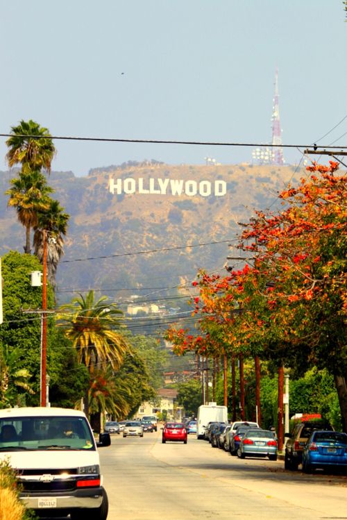 Hollywood, Los Angeles, California Arbonne photoshoot for the catalogue happens right here