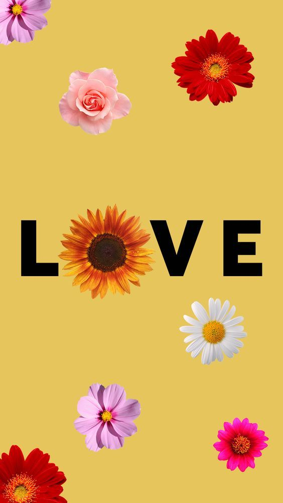 flowers, nature, flower power, flower lovers, pastel colors, wallpaper, screensaver, iphone wallpaper, iphone screensaver, travelling, travel, world map #gocase #lovegocase #wallpaper #lockscree