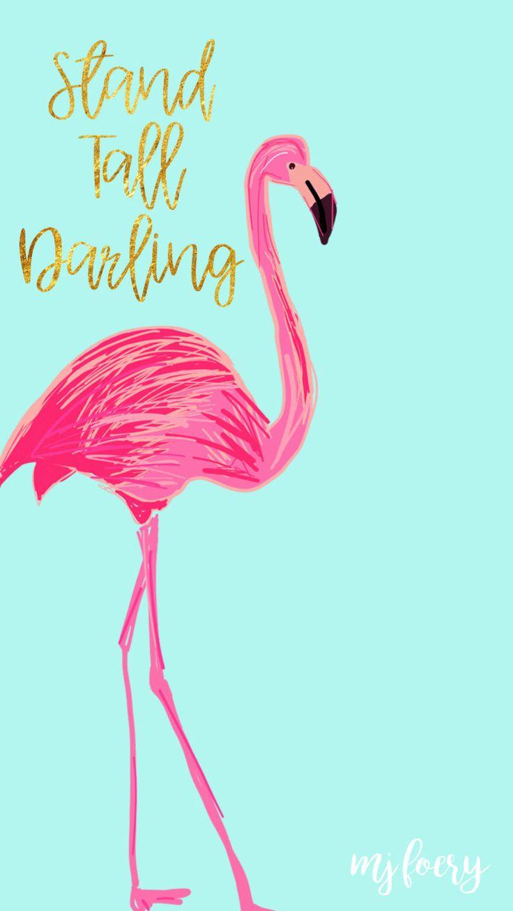 Flamingo Friday – Free Background
