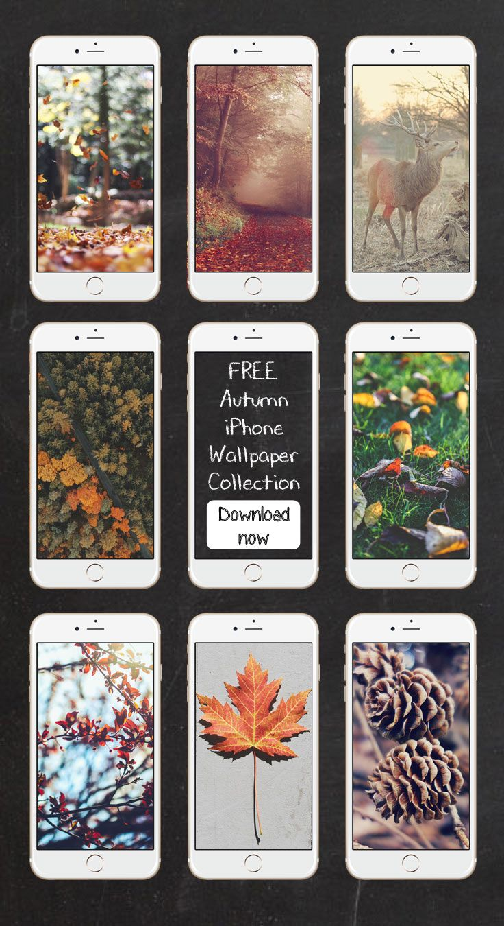 Free Autumn iPhone Wallpaper Collection ★ Download it at www.preppywallpap...