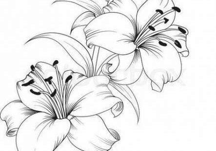 49+ ideas flowers tattoo sketch artists for 2019 #tattoo #flowers