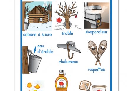 Fichier PDF téléchargeable Langue: français En couleurs Taille d