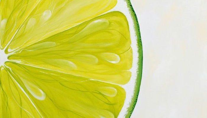 Eine Limettenscheibe mit Aquarellfarben zeichnen, schöne und leichte Zeichnungen für Anfänger