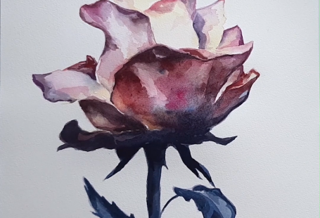 Enjoy watching the creative process behind this watercolor painting, how this beautiful rose is created and click if you want to see more videos in the blog! All painted by the visual artist Laura Manteca Martin from Ink Imaginarium. . . . . #watercolorvideo #watercolorprocess