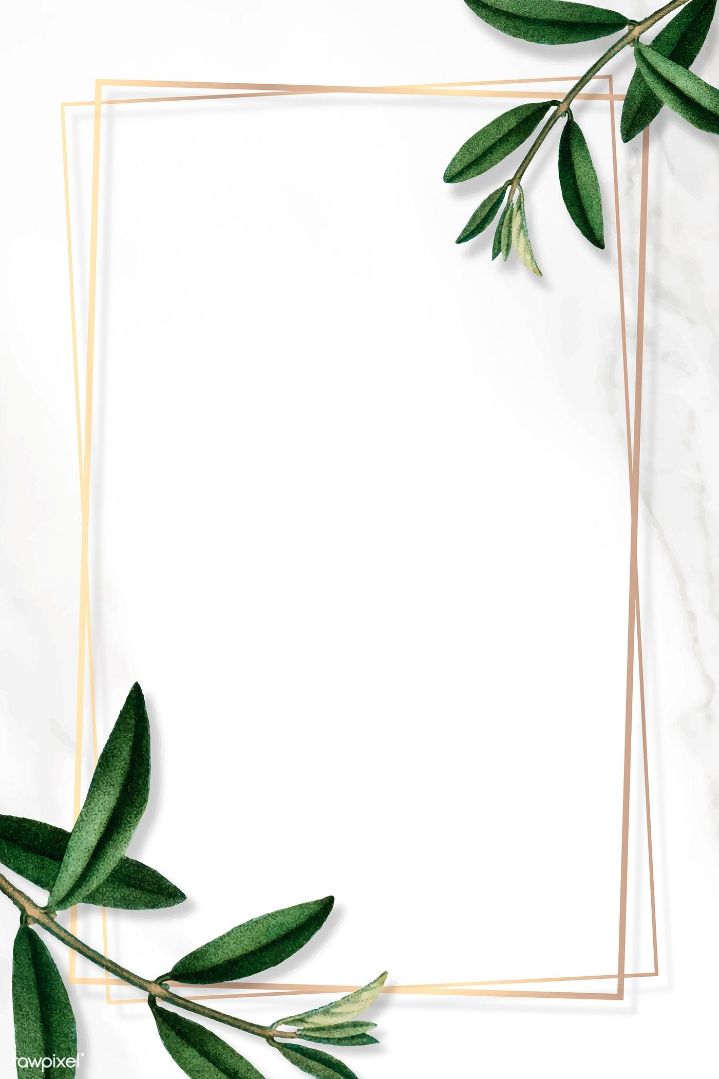 Gold frame with green leaves on white background vector | premium image by rawpixel.com / sasi #vector #vectorart