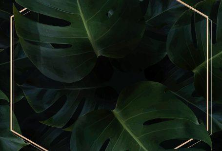 Hexagon golden frame on a tropical background vector