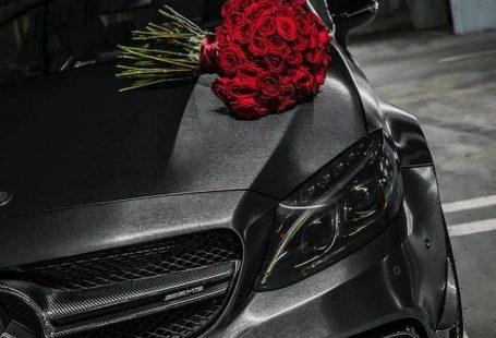 Downloaden Sie jetzt Mercedes Roses Wallpaper von IVANH2R - 85 - kostenlos auf ZEDGE ™. Durchsuche... -