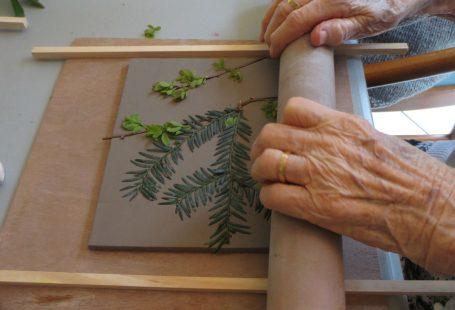 Il y a 3 semaines, je suis allée faire un atelier de céramique dans une Maison de retraite. Ma première ! J