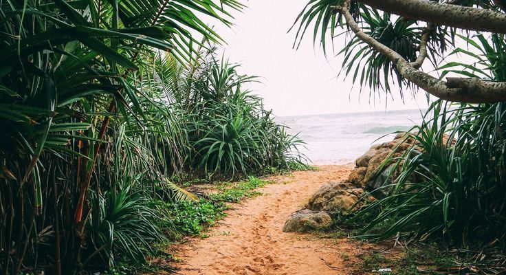 Exploring Beruwala And Bentota, Sri Lanka #VisitSriLanka