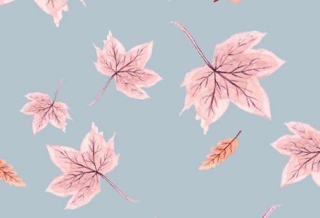 Fall-Cell-Phone-Wallpaper-Background-Leaves-Blue.jpg