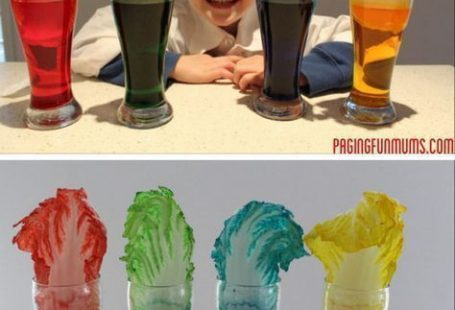 Fun & Creative Science Experiments for Kids - #Creative #Experiments #fun #Kids #learning