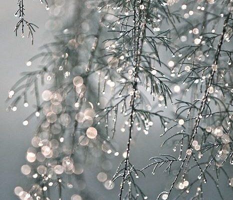 Glanz steht der Winter Persönlichkeit besonders gut! Kerstin Tomancok / Farb-, Typ-, Stil & Imageberatung