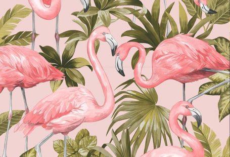 I Love Wallpaper Flamingo Wallpaper Blush Pink #designwallpaper A recent addition to I Love Wallpaper