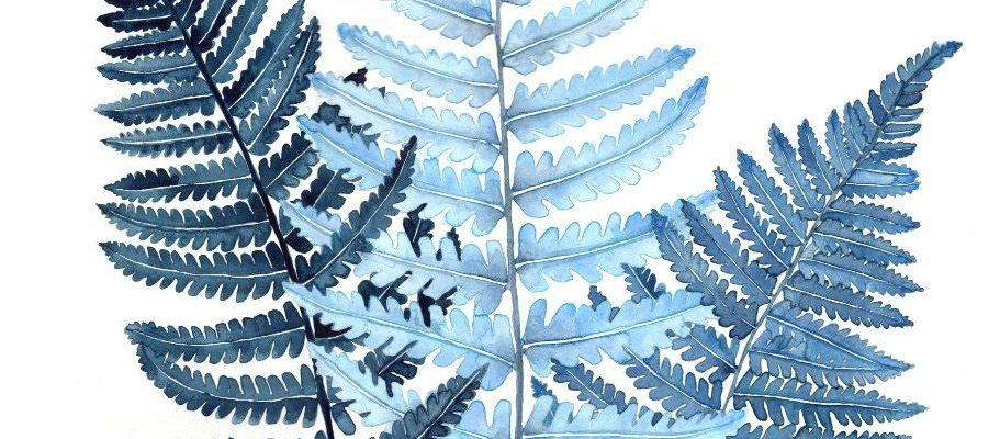 Indigo Fern Leaf Watercolor Botanical Print - Sold on Etsy - artist Jenni Pirmann