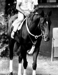 Ruffian- was it possible she was as fast or faster than Secretariat? Sadly, she
