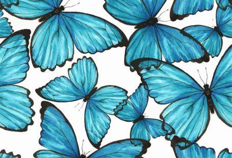 Removable Wallpaper Self Adhesive Blue Butterflies Nursery