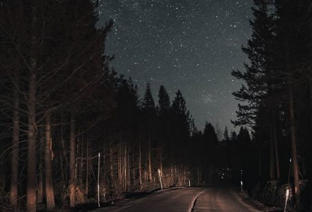 Road in the night - #iphone #night #road - #iPhone #night #Road