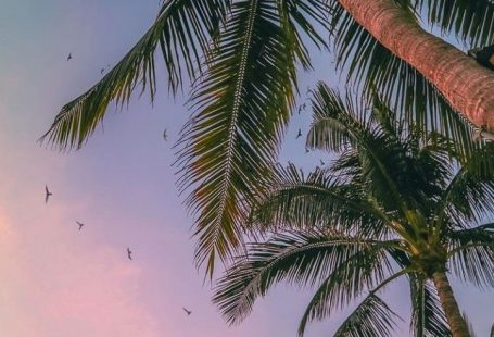 Sonnenuntergang Ansichten #Sommer -  Juna Rosenfeld - #Ansichten #Sommer #Sonnenuntergang