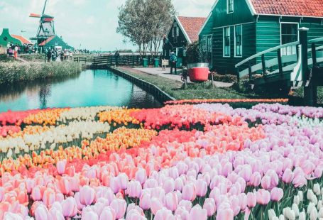 Top things to do in the Netherlands! See the canals of Amsterdam, fields of tulips, Anne Frank Museum, Cube Homes of Rotterdam, and Zaandam Netherlands. #avenlylane #avenlylanetravel #netherlands