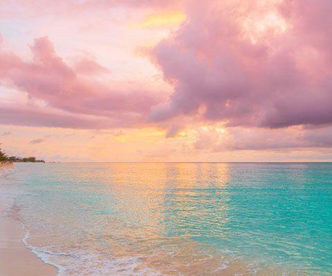 Viel Spaß mit dem Cayman Cookout! Eine legendäre 5-Tage-Kulinarik - # 5day ...   - Amy - #5day #5TageKulinarik #Amy #Cayman #Cookout