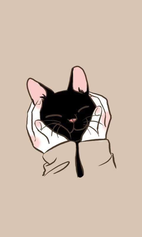 Wallpapers de gatinhos fofos. #wallpapers #gatinhos #gatinhosfofos #fofos #cat