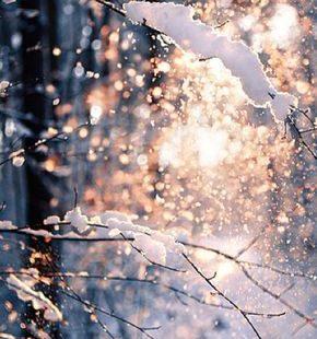 Winter, Schnee, Plätzchen und Weihnachten in Sicht. Was will man mehr?#man #mehr #plätzchen #schnee #sicht #und