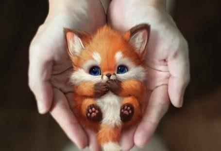 @miillustrations auf Instagram: artist @art_of_silverfox LITTLE ANIMALS, #animals #artist #artofsilverfox #auf #Instagram