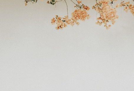 {Blumen} - #Blumen #inszenierung - #Blumen #inszen... - #Blumen -
