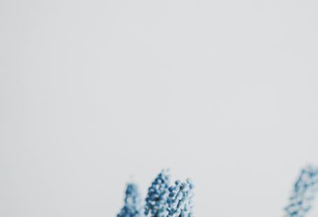 Papel de parede grátis com flores azuis na parte inferior da tela