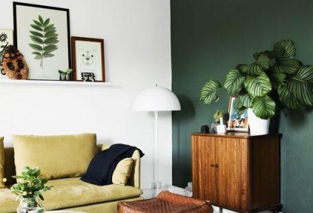 groene-muur-keuken-woonkamer
