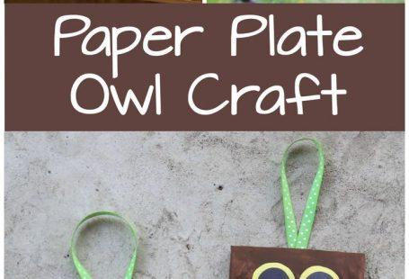 Paper Plate Owl Craft - Adorable kids craft idea, turn it into a door hanger.