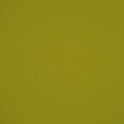 RM Coco Escapade Fabric Color: Palm