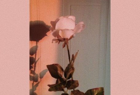 , #aestheticwallpaperiphone , #wallpaperiphone , #aestheticwallpaperiphone ,
