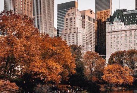 #autumninnewyork #fall Photography