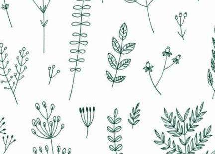 39+ Trendy Plants Wallpaper Pattern Inspiration #plants