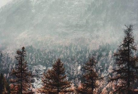 44 Winter iPhone Wallpaper Ideen - Winter Hintergrnde [Free Download] - #Download #FREE #Hintergrnde #Ideen #iPhone