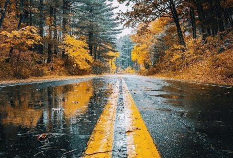 Autumn Road Rainfall Trees Android Wallpaper #nature #wallpaperideas #road