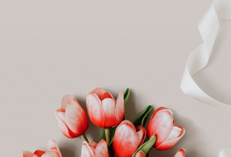 Red and white tulip on blank beige background template