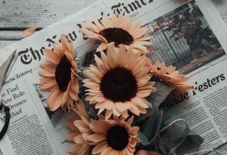 Orange Blumen Sonnenblumen in einem Blumenstrauß auf einer Zeitung Foto des Swagmädchens?  Orange Blumen Sonnenblumen in einem Blumenstrauß auf einer Zeitung Foto des Swagmädchens? #auf #Blumen #Blumenstrauß #des