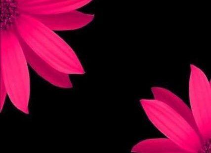 Super Garden Wallpaper Desktop Beautiful 17 Ideas #garden