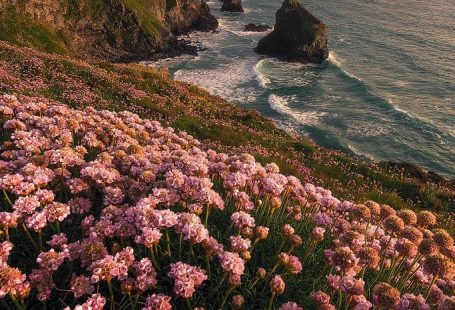 """allthingseurope: """"Bedruthan Steps, England (by Milos Lach) """"::…Click here to download nature wallpaper Download nature wallpaper: allthingseurope: """"Bedruthan Steps, England (by Milos Lach) """" Here"""