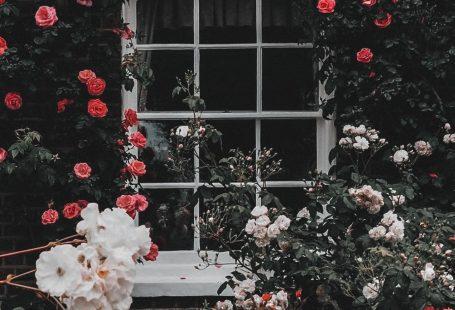 samsung wallpaper flowers #Hintergrundbild #tapete - #bluewallpaper #bluewallpaperiphone